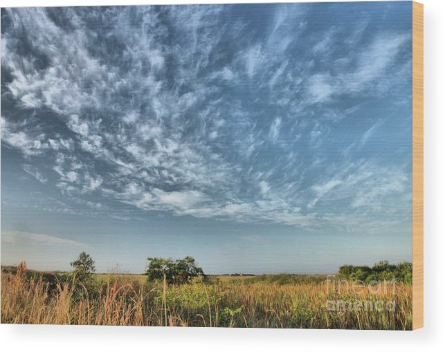 Sky Wood Print featuring the photograph Everglades Sky by David Call