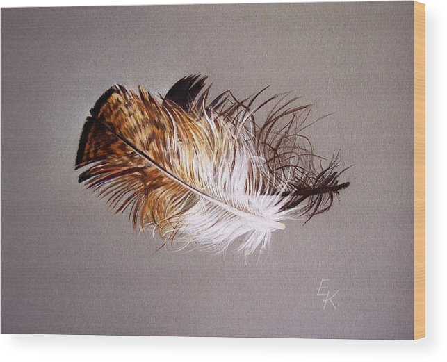 Still Life Wood Print featuring the drawing Feather And Shadow 2 by Elena Kolotusha