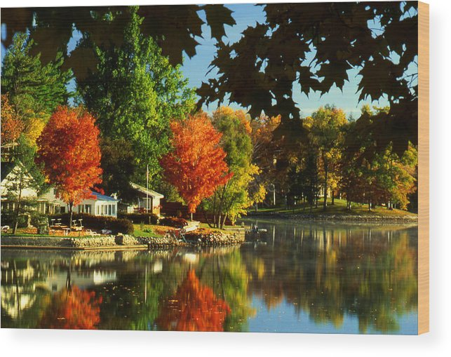 Fall Wood Print featuring the photograph Flaming Maples by Roger Soule