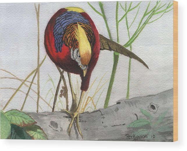 Wildlife Wood Print featuring the painting Golden Pheasant by George Parkinson