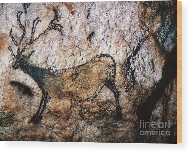 Cave Wood Print featuring the photograph Lascaux: Running Deer by Granger