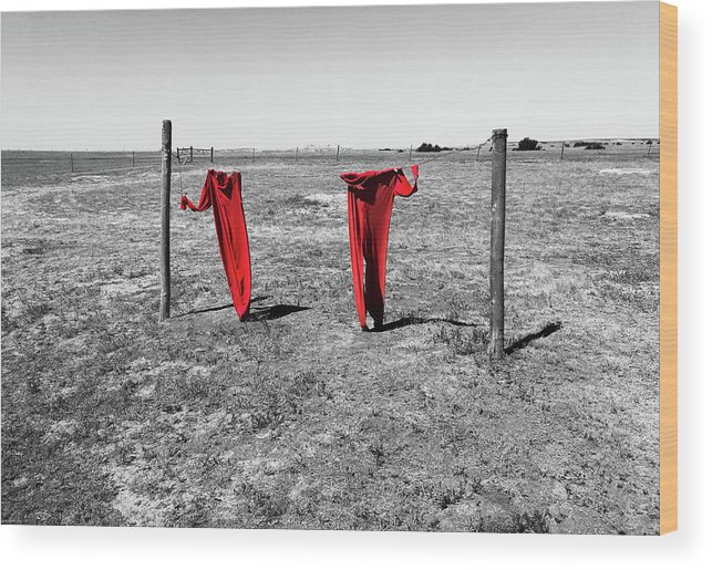 National Parks Wood Print featuring the photograph Laundry Day by Aaron Geraud
