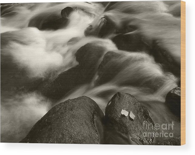 Waterfall Wood Print featuring the photograph Leaves And Waterfall by Timothy Johnson