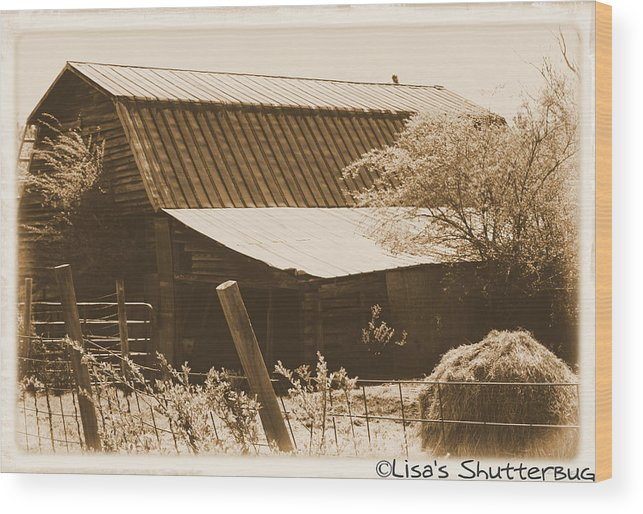 Barn Wood Print featuring the photograph Mcdonald 1 by Lisa Johnston