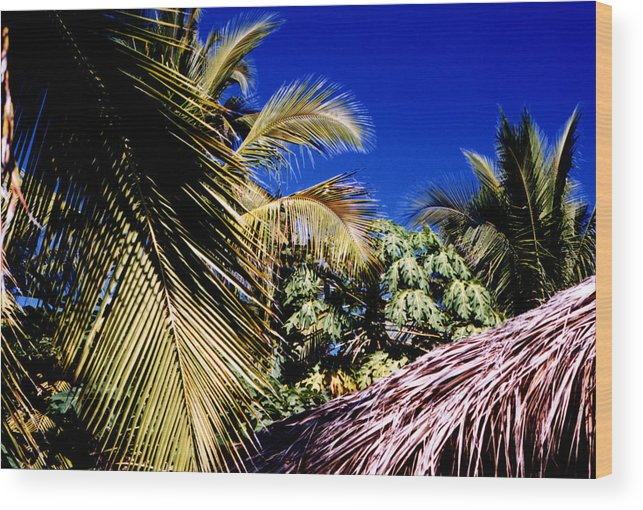 Palms Wood Print featuring the photograph Palms All Around 2 by Lyle Crump