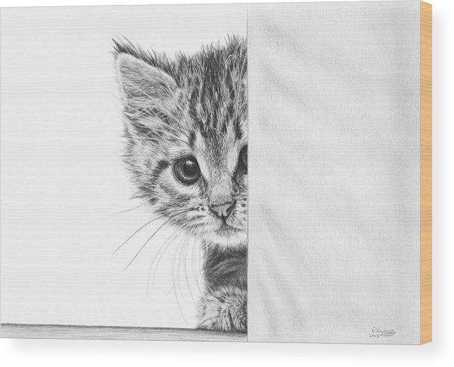 Cat Wood Print featuring the drawing Peekaboo by Frances Vincent