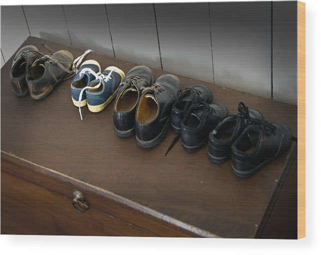 Amish Wood Print featuring the photograph Ready For School by Fred Lassmann