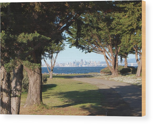 San Francisco Wood Print featuring the photograph San Francisco Framed By Trees by Jean Booth
