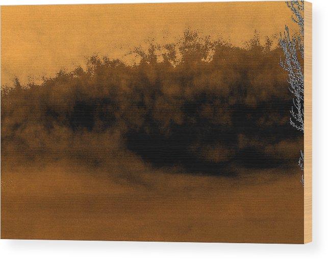 Digital Wood Print featuring the digital art Sandstorm On Arrakis by Richard Coletti
