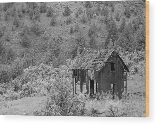 Building Wood Print featuring the photograph Shack On A Hill by Angi Parks