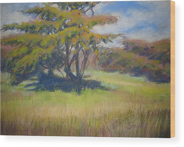 Tree Wood Print featuring the painting Shade by Shirley Braithwaite Hunt