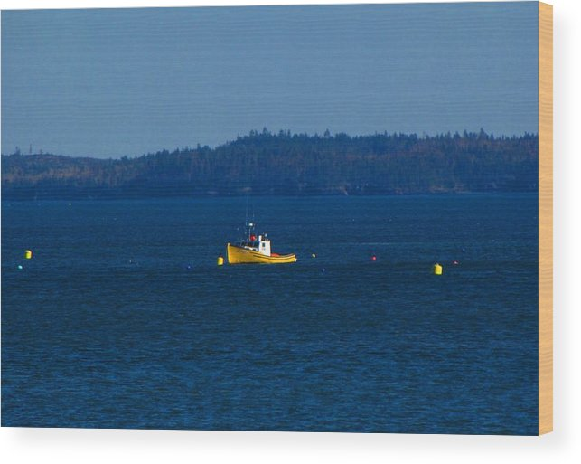 Boat Wood Print featuring the photograph Small Yellow Boat by Melissa Parks