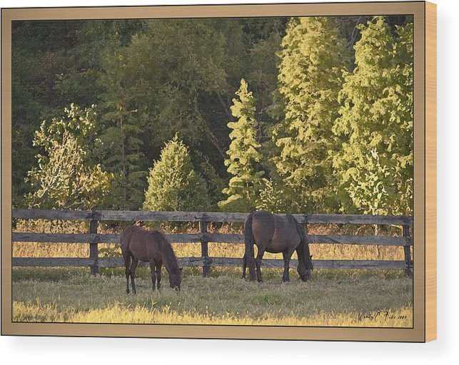 Sun Setting Wood Print featuring the photograph Sunset Farm by Wendy Fike