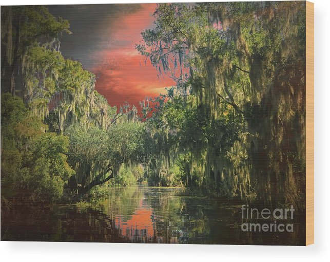 Louisiana Swamp Wood Print featuring the photograph Swamp 1 by Larry White