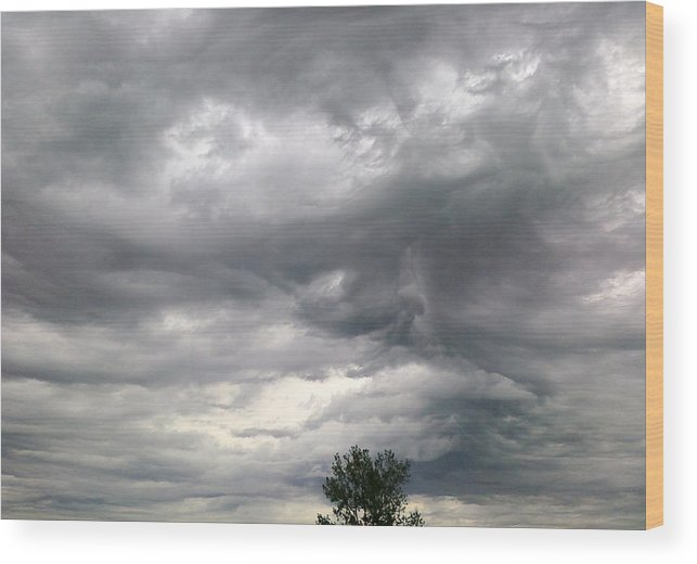 Tree Wood Print featuring the photograph Tree And Cloud by Stephen Doughten