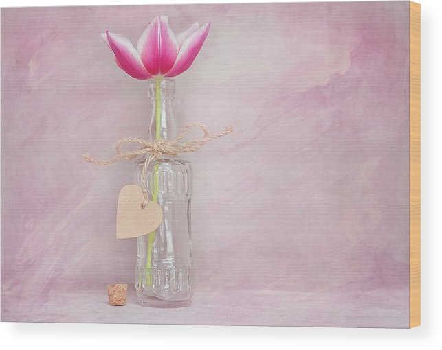 Flower Wood Print featuring the photograph Tulip In Bottle by FL collection