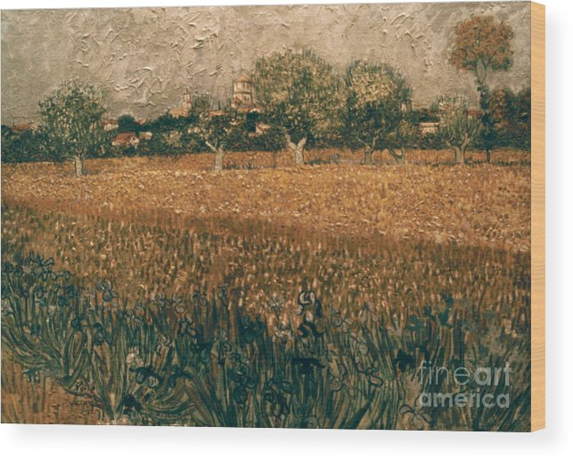 1888 Wood Print featuring the photograph Van Gogh: Arles, 1888 by Granger