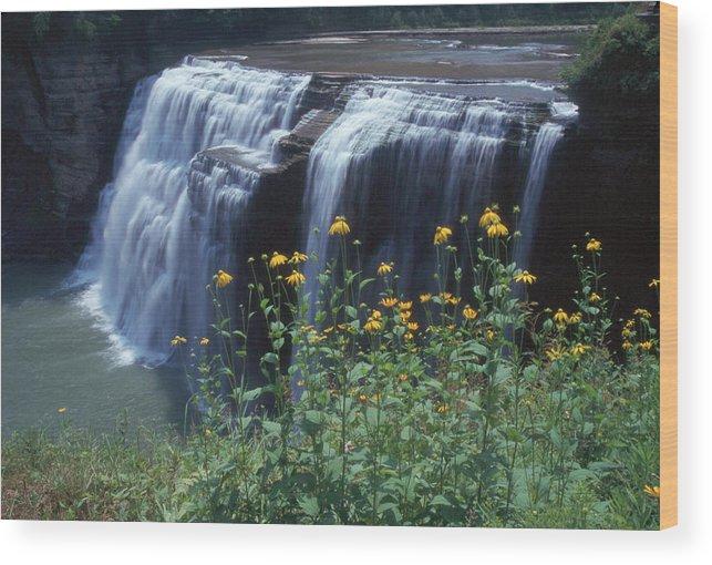 Waterfalls Wood Print featuring the photograph Water Falls by Raju Alagawadi