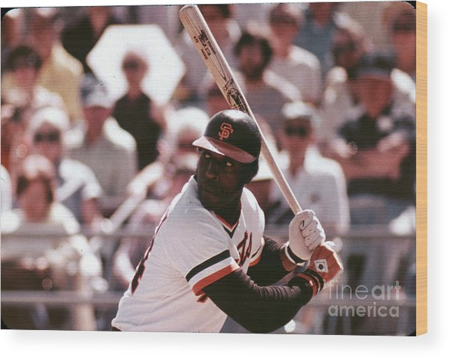 Candlestick Park Wood Print featuring the photograph Willie Mccovey by Mlb Photos