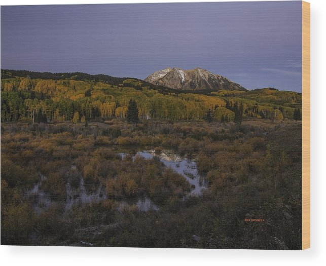 Autumn Landscape Wood Print featuring the photograph Autumn Serenity by Bill Sherrell