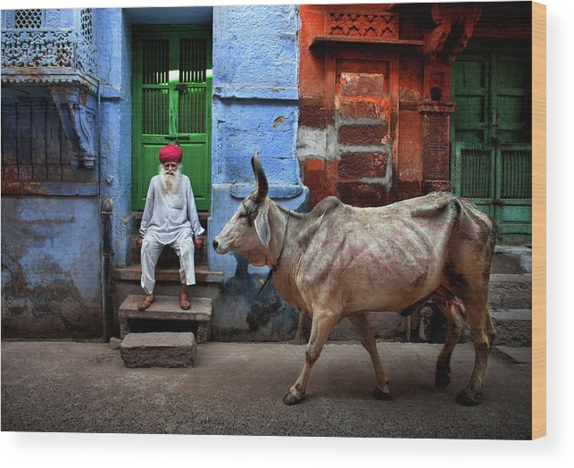 Jodhpur Wood Print featuring the photograph India by Fadhel Almutaghawi