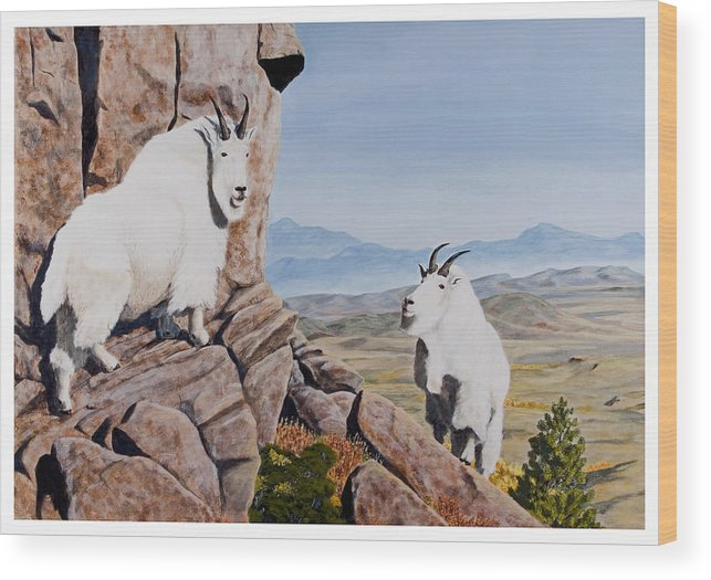 Nevada Wood Print featuring the painting Nevada Mountain Goats by Darcy Tate