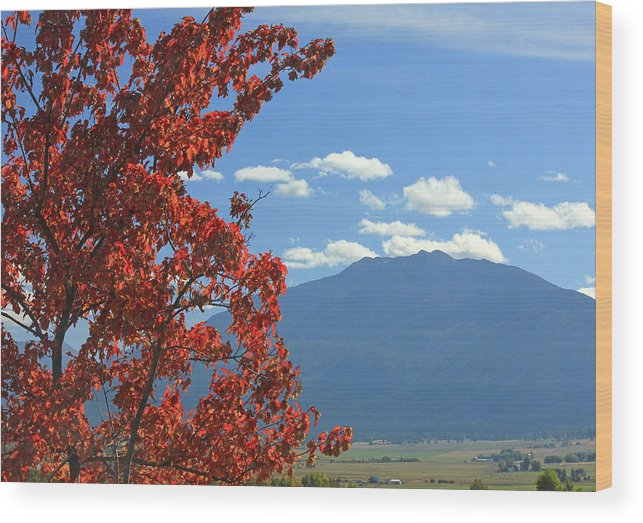 Fall Colors Wood Print featuring the photograph Dn5930-wallowa Valley In Fall by Ed Cooper Photography