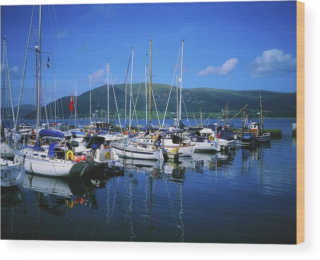 Journey Wood Print featuring the photograph Carlingford Yacht Marina, Co Louth by The Irish Image Collection