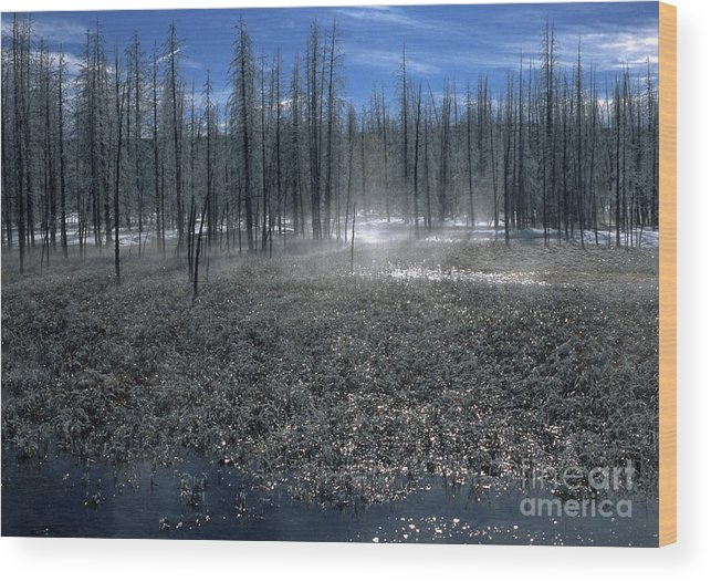 Bronstein Wood Print featuring the photograph Midway Geyser Area by Sandra Bronstein