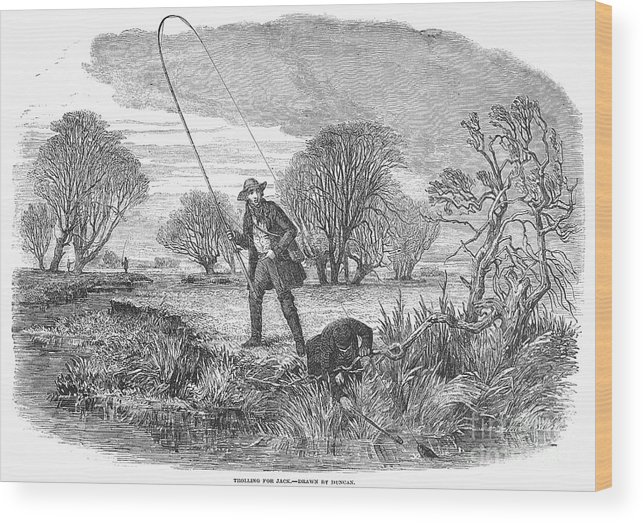 1850 Wood Print featuring the photograph Trolling For Jack, 1850 by Granger