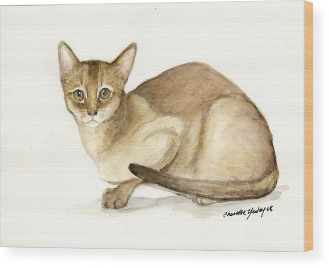 Cat Wood Print featuring the painting Absyssinian Cat by Charlotte Yealey