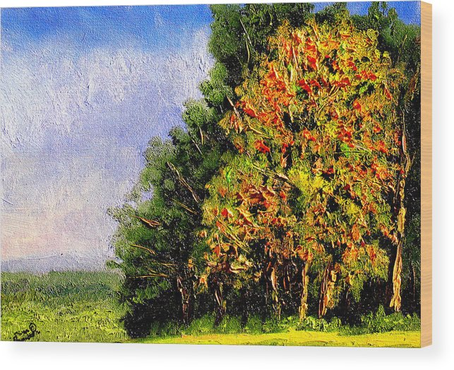 Plein Air Wood Print featuring the painting Bc11 by Stan Hamilton