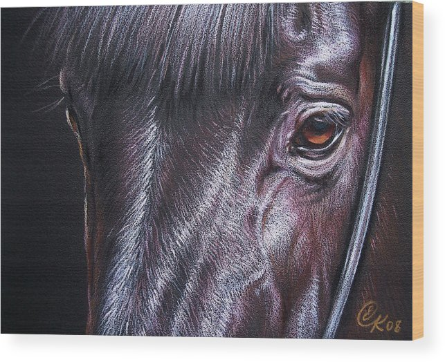 Horse Animal Portrait Equine Drawing Wood Print featuring the drawing Black Stallion by Elena Kolotusha
