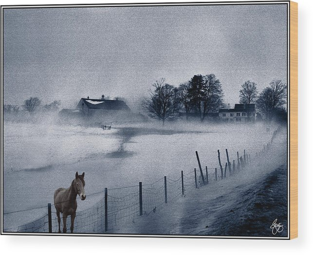 Mist Wood Print featuring the photograph Brown Horse On A Blue Farm by Wayne King