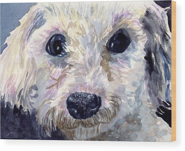 Bichon Frise Wood Print featuring the painting Did You Say Lunch by Sharon E Allen