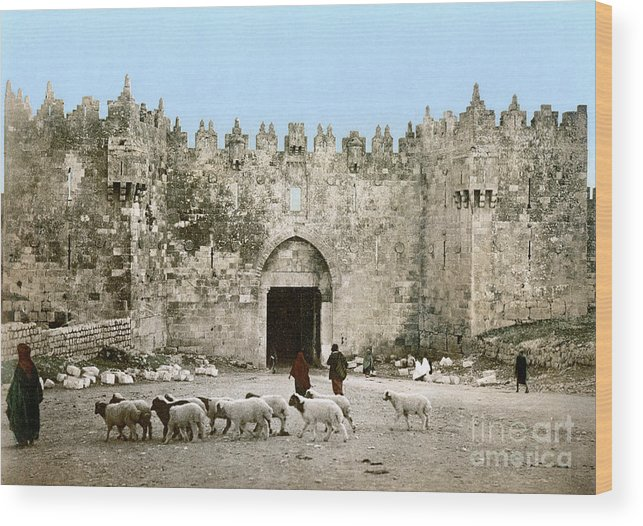 1900 Wood Print featuring the photograph Jerusalem: Damascus Gate by Granger