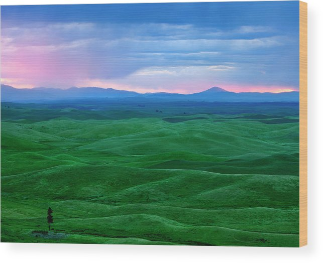 Palouse Wood Print featuring the photograph Red Dawn Over The Palouse by Mike Dawson