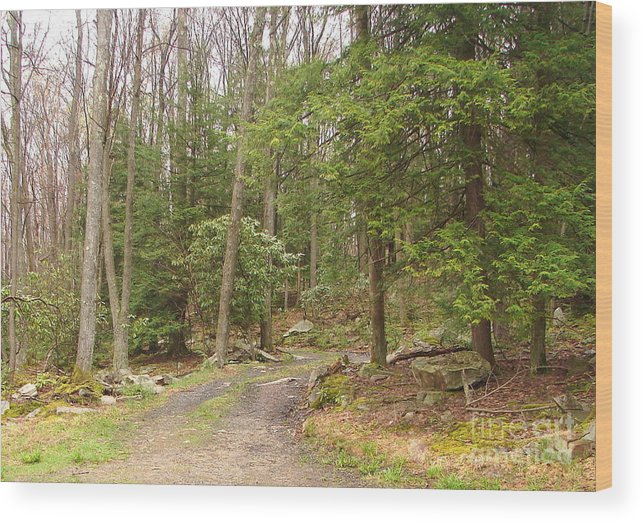 Woodsy Scene Wood Print featuring the photograph The Road Home by Penny Neimiller