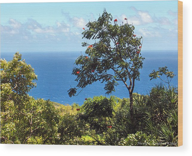 Landscape Wood Print featuring the photograph Island Breeze by Nicole I Hamilton