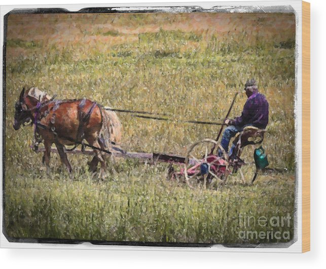 Farm Wood Print featuring the photograph Farming With Horses by Janice Pariza