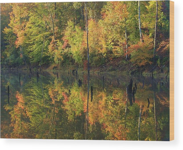 Lake Wedowee Wood Print featuring the photograph Lake Wedowee Alabama by Mountains to the Sea Photo