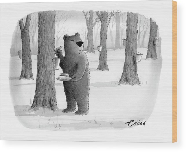 Bear Wood Print featuring the drawing New Yorker April 2nd, 2007 by Harry Bliss
