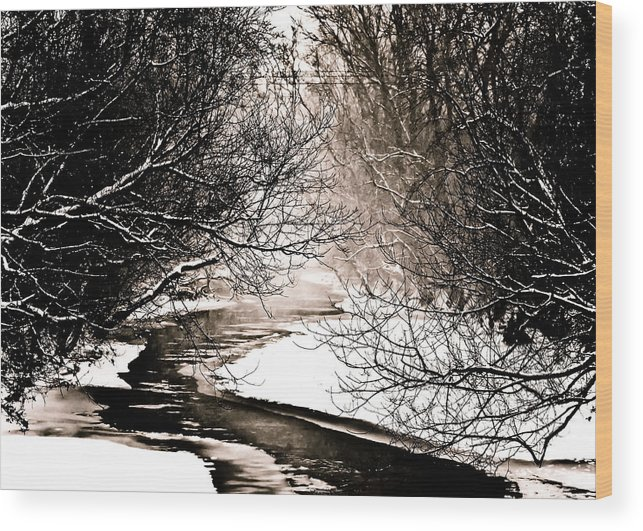 Stream Wood Print featuring the photograph A Winter Stream 2 by Sarah Cafaro