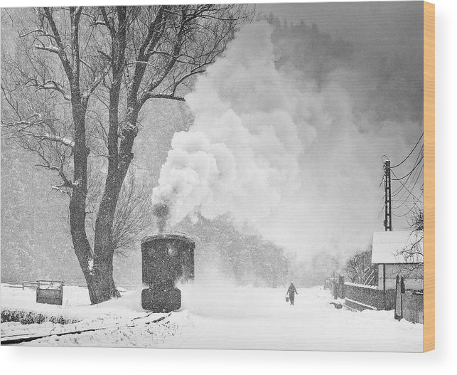 Bw Wood Print featuring the photograph A Winter's Tale by Sorin Onisor