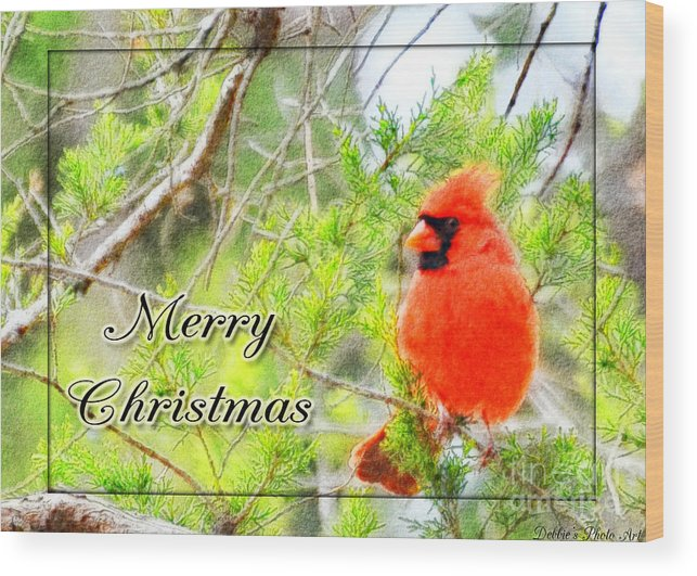 Animals Wood Print featuring the photograph Cardinal Christas Card by Debbie Portwood