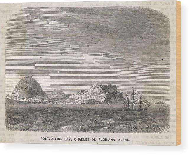 Galapagos Wood Print featuring the drawing Charles (or Santa Maria/ Floriana) by Mary Evans Picture Library