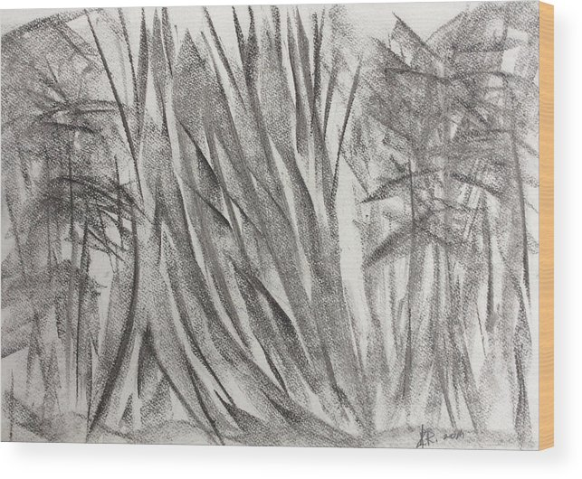 Tree Wood Print featuring the drawing Kauri Giant by Arthur Right