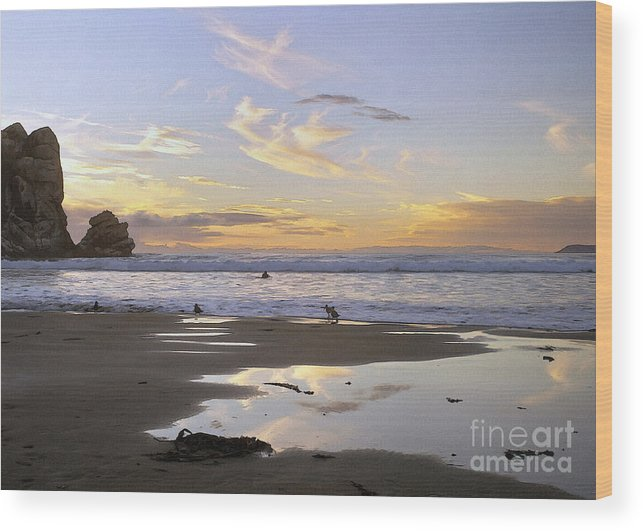 Morro Rock Wood Print featuring the digital art Morro Rock Park by Sharon Foster