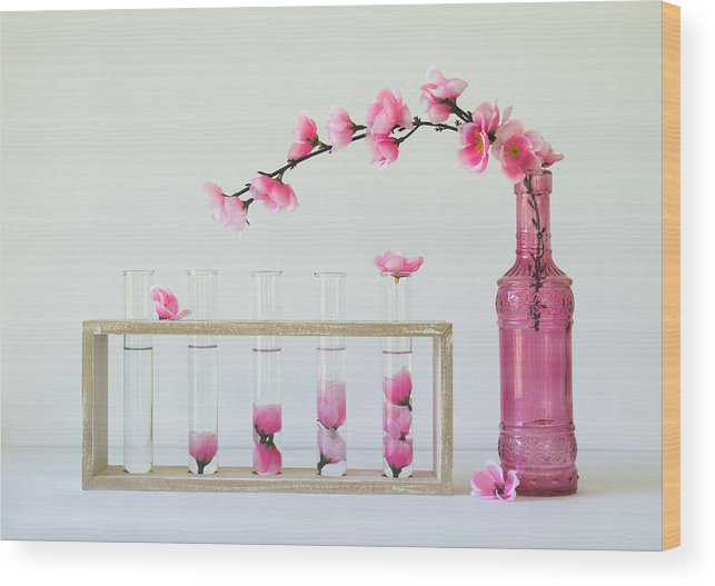 Pink Wood Print featuring the photograph Petal Collecting by Jacqueline Hammer
