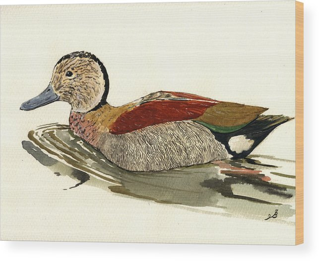 Ringe Wood Print featuring the painting Ringed Teal by Juan Bosco